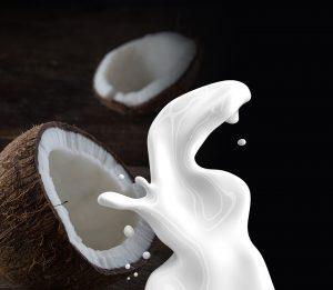 Dra_Saludable leche de coco - bebidas vegetales